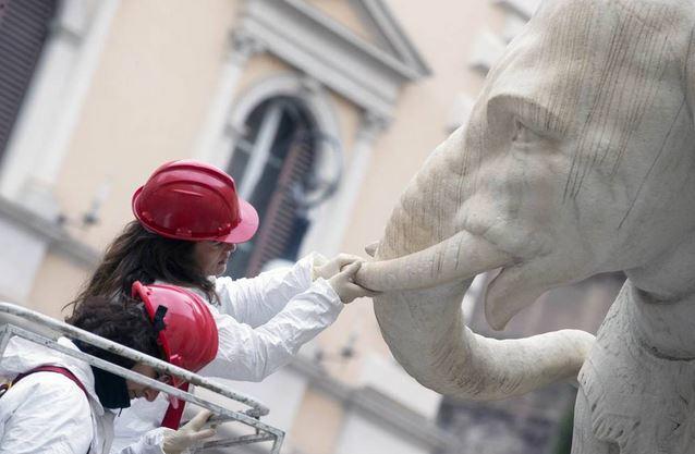 161127-elefantino