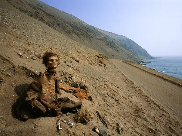 mummia cile